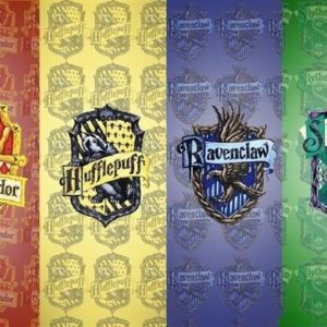 Harry Potter House Quiz: Which Hogwarts House Are You In?