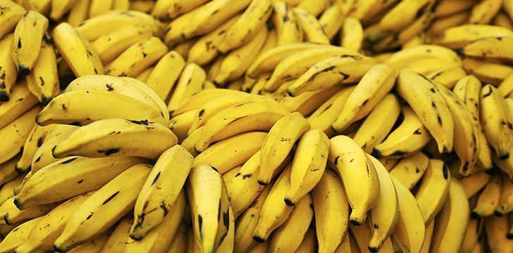 Brilliant Banana Facts