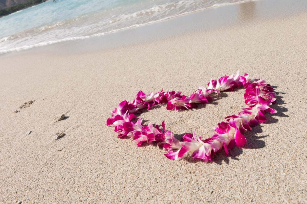 pink flower lei on sand